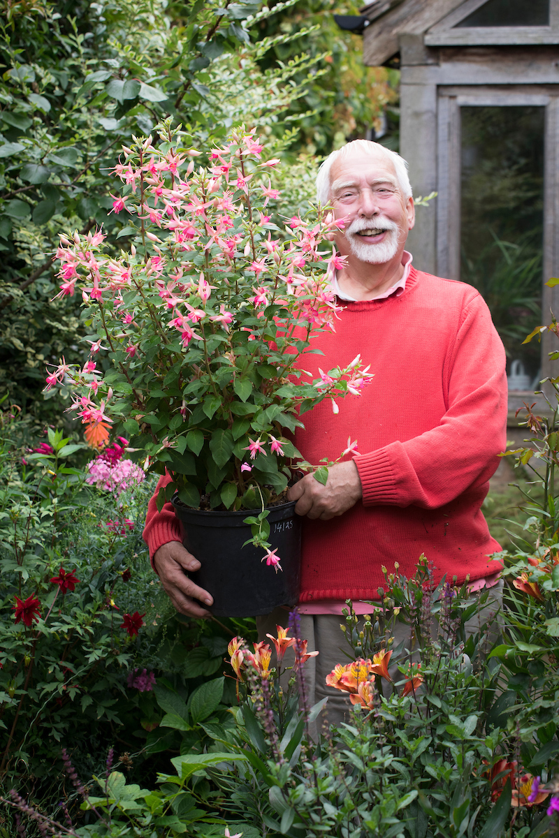 Delightful But Most Varieties Are Half Hardy And Would Be Killed By The Frost If Left  Outdoors All Winter. When Which? Gardening Magazine Trialled Different Ways  Of ...